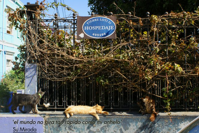 Nostalgia versus yo - Valparaíso
