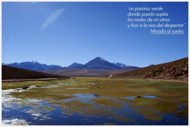 Nostalgia versus yo - Atacama - Chile