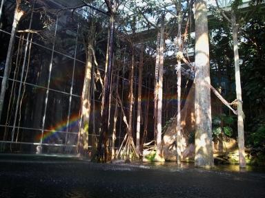 Double rainbow barcelona
