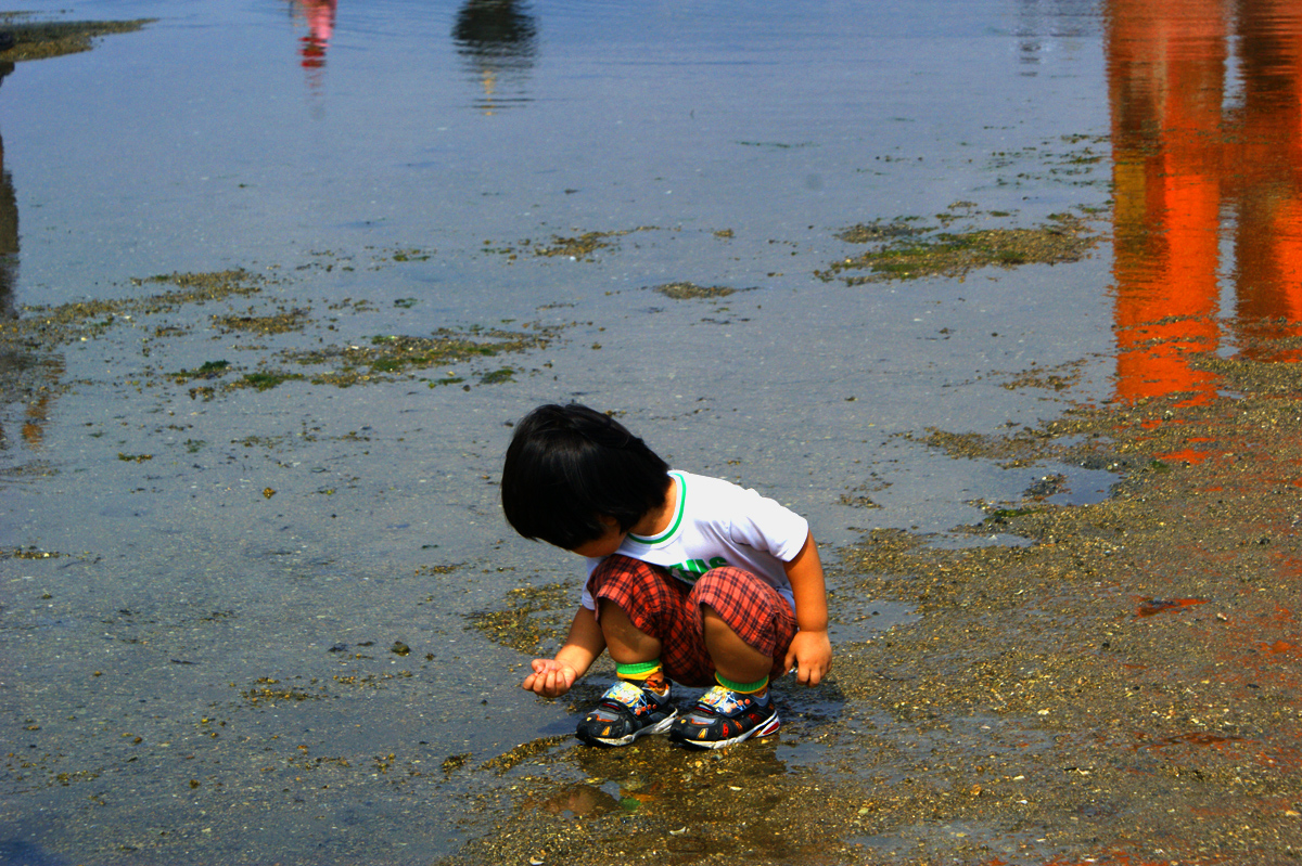 japan kid miyajima