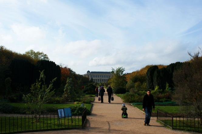 Jardins des plantes Paris