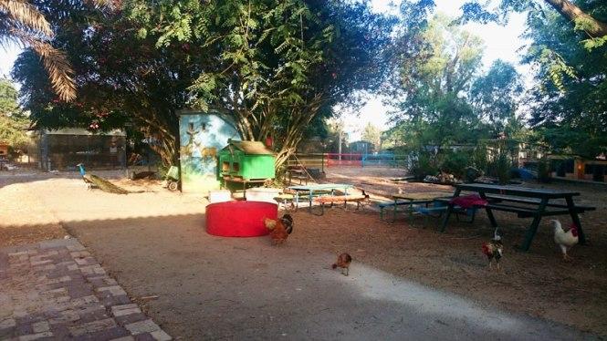 Israel ein hashofet kibbutz
