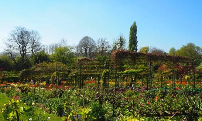 jardin garden giverny monet